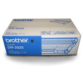 DRUM BROTHER 2025