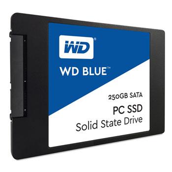 250GB WESTERN WDS250G1B0A (blue)